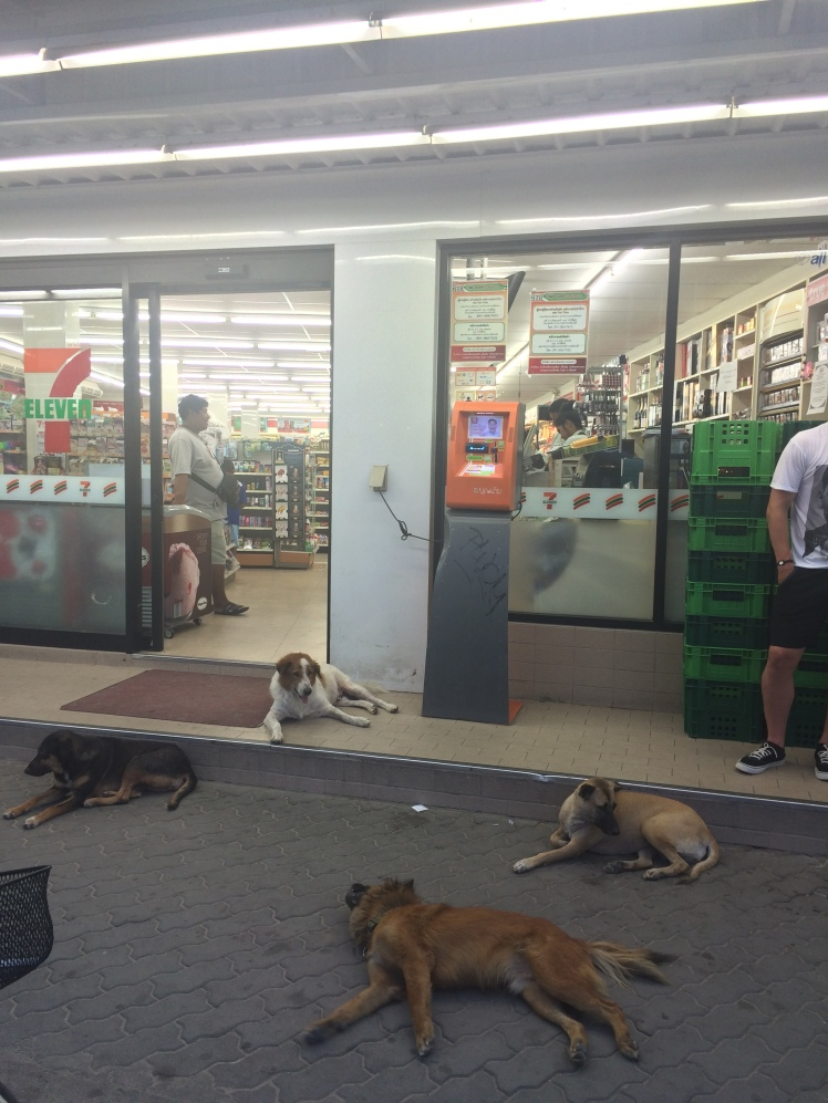 7-11 is the cool place to hang out