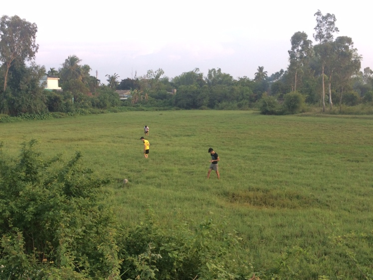 Saw these kids trying to catch something in the fields